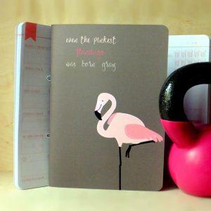 jolletnaplo_flamingo_jln_fitt_dieta_karlalina