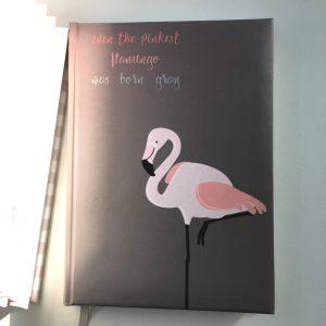 agenda_2018_flamingo_karlalina